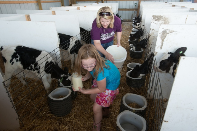 The Davis Family experiencing feeding calves.