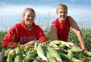 J & E's Sweet Corn