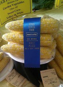 Sweet Corn 2014