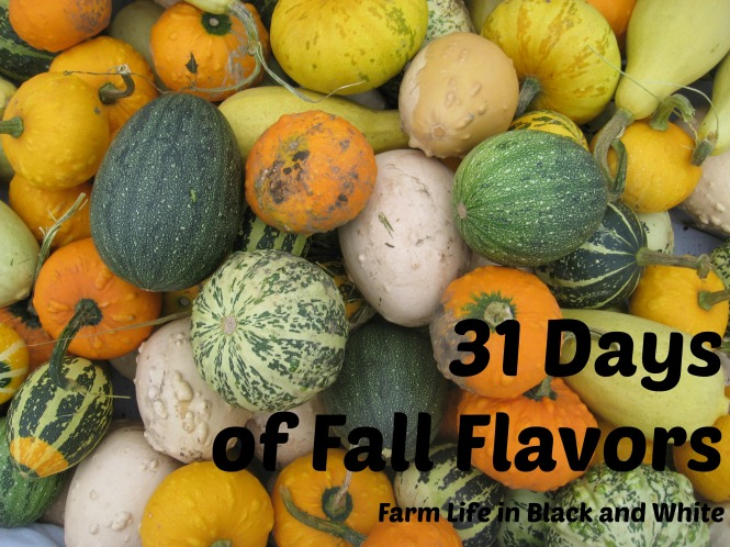 31 days of fall flavors