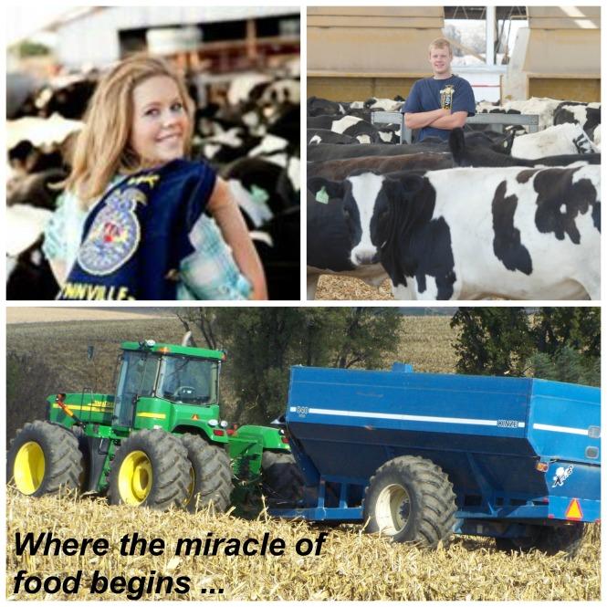 Kids Holsteins