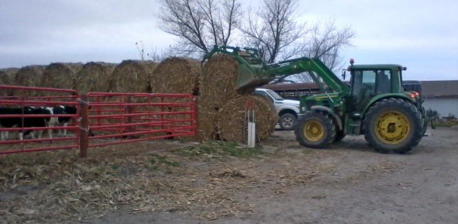 Putting bales in place