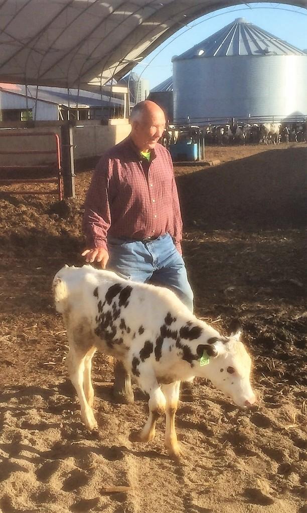 Grandpa and Calf