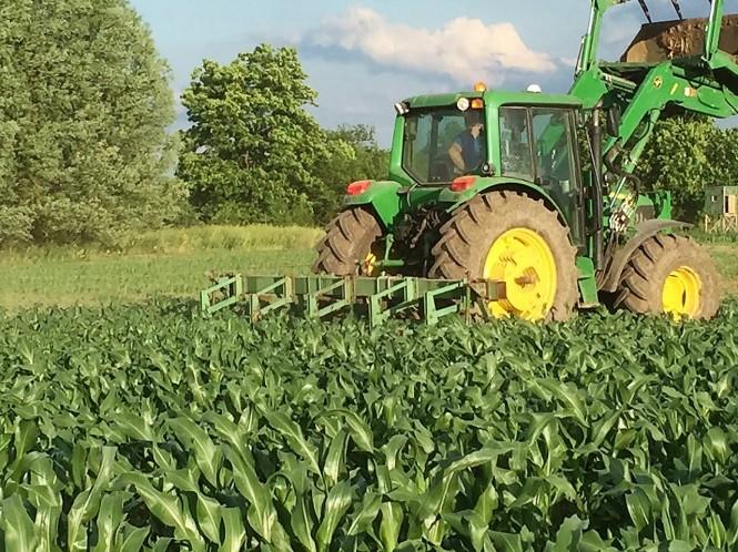 SC June 4 2016 cultivator