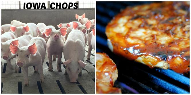 Iowa Chops