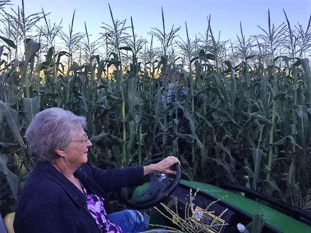 grandma-van-sweet-corn