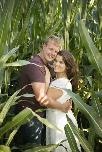cornfield-engage_h